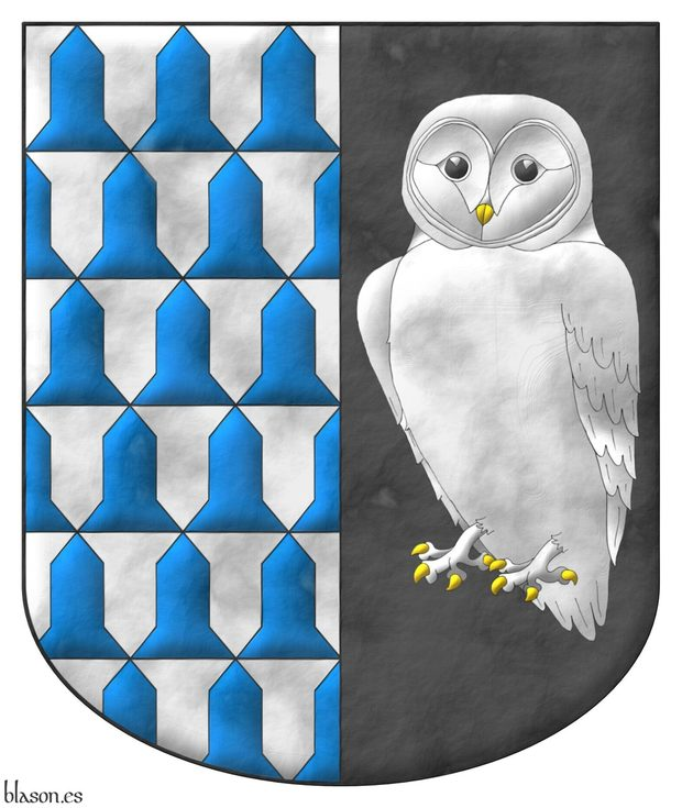Party per pale: 1 Vair; 2 Sable, a barn owl Argent, the eyes Sable, beaked and armed Or.
