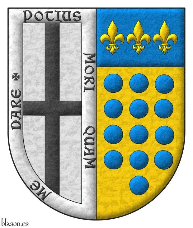 Escudo partido: 1o de plata, una cruz plena de sable, y una bordura de plata con el lema «Potius morí quam me daré», que es de Vidriales; 2o de oro, trece roeles de azur, en tres palos de 4, 5 y 4, y el jefe de azur con tres flores de lis de oro, que es de Bustamante.